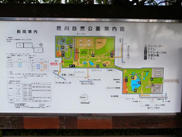 arakawa-nature-park_1