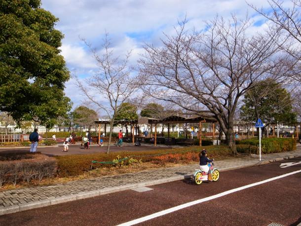 arakawa-nature-park_6